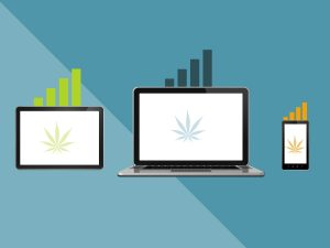 Cannabis-Based Business website results