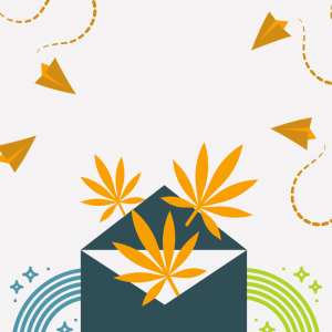 cannabis graphic design